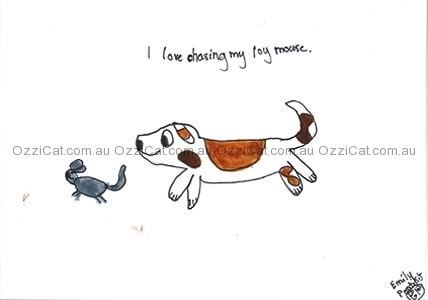 Cat drawings by Emily from Geelong, VIC | Australian National Cat Magazine - Ozzi Cat