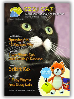 Ozzi Cat - Australian National Cat Magazine - Issue 3 - March 2013