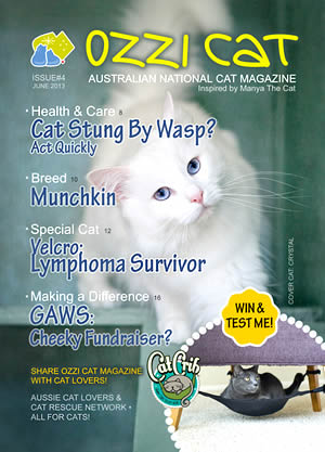 Ozzi Cat - Australian National Cat Magazine - Issue 4 - Winter 2013