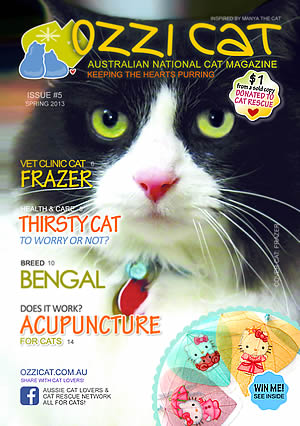 Issue #5 (Spring 2013) - Ozzi Cat Magazine for Cat Lovers and Cat Parents