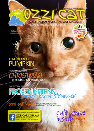 Issue #6 (Summer 2013) - Ozzi Cat Magazine for Cat Lovers and Cat Parents