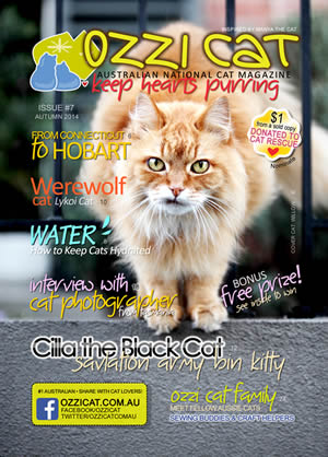 Issue #7 (Autumn 2014) - Ozzi Cat Magazine for Cat Lovers and Cat Parents