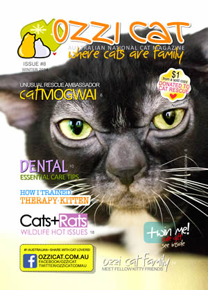 Issue #8 (Winter 2014) - Ozzi Cat Magazine for Cat Lovers and Cat Parents