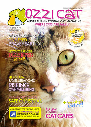 Issue #10 (Summer 2014) - Ozzi Cat Magazine for Cat Lovers and Cat Parents