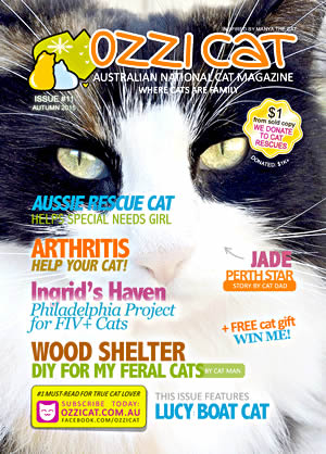 Issue #11 (Autumn 2015) - Ozzi Cat Magazine for Cat Lovers and Cat Parents