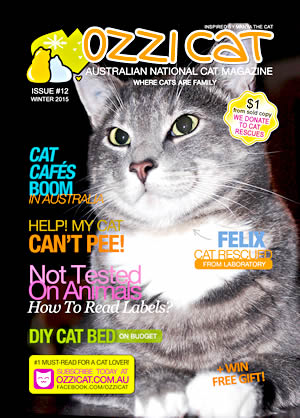 Issue #12 (Winter 2015) - Ozzi Cat Magazine for Cat Lovers and Cat Parents