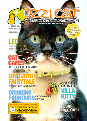 Issue #14 (Summer 2015) - Ozzi Cat Magazine for Cat Lovers and Cat Parents