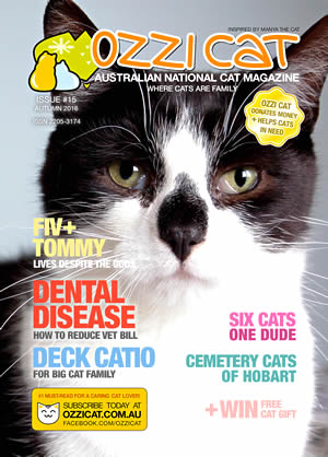 Issue #15 (Autumn 2016) - Ozzi Cat Magazine for Cat Lovers and Cat Parents