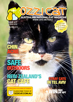 Issue #17 (Spring 2016) - Ozzi Cat Magazine for Cat Lovers and Cat Parents