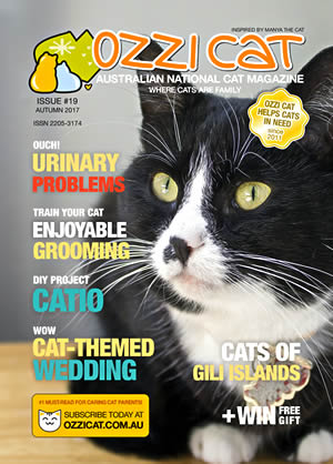 Issue #19 (Autumn 2017) - Ozzi Cat Magazine for Cat Lovers and Cat Parents
