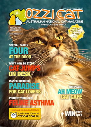 Issue #21 (Spring 2017) - Ozzi Cat Magazine for Cat Lovers and Cat Parents