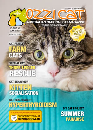 Issue #22 (Summer 2017) - Ozzi Cat Magazine for Cat Lovers and Cat Parents