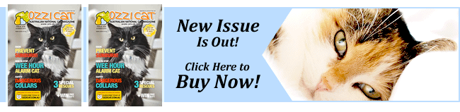 Subscribe to Ozzi Cat Magazine - Australian National Cat Magazine - Cat Health and Care, Cat Behaviour Problems Solved, Cat Training, Cat Products, DIY, Cat Stories