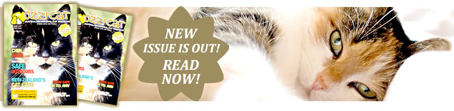 Subscribe to Ozzi Cat Magazine - Australian National Cat Magazine - Cat Health and Care, Cat Behaviour Problems Solved, Cat Products, Offers, Cat Stories