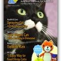 Ozzi Cat Magazine Issue #3 (Printed Copy)