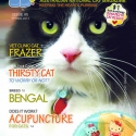 Ozzi Cat Magazine Issue #5 (Printed Copy)