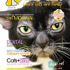Ozzi Cat Magazine Issue #8 (Printed Copy)