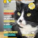 Ozzi Cat Magazine Issue #19 (Printed Copy)