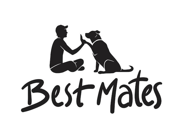 Best Mates - Free Veterinary Care & Emergency Cat Boarding For Homeless And People In Need
