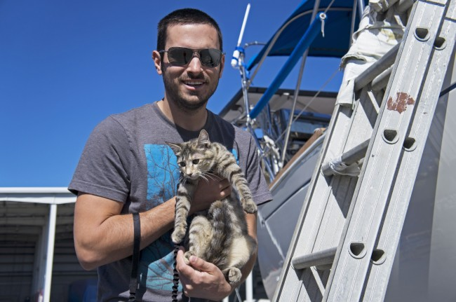 Boat cat Georgie - travels the world sailing
