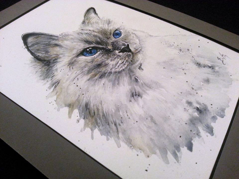 15 Amazing Watercolour Cat Drawings And Cat Portraits By Artist ...