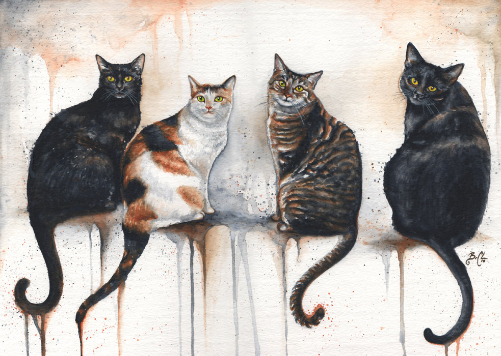 Life Magazine Print Black Cat