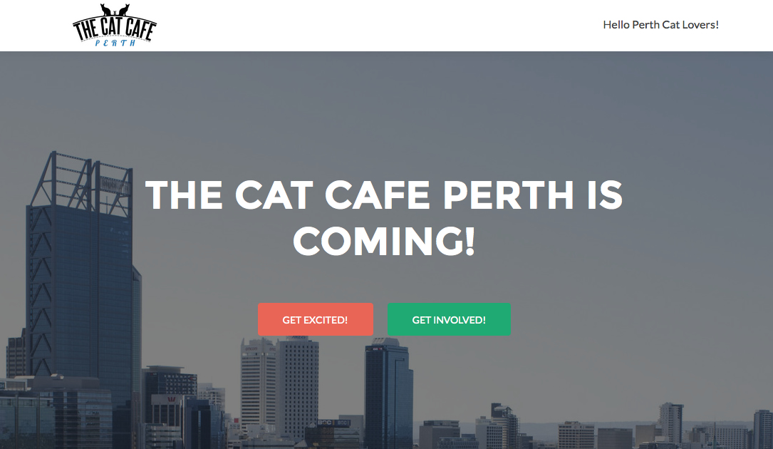 Cat Cafe Perth - Western Australia - opens soon