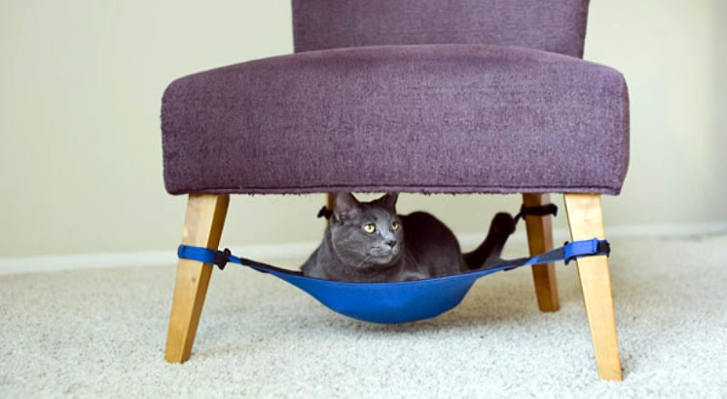 Cat Crib, a Space-Saving Hammock - Where Your Cat Would Hang Out