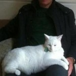 Cat Lover Dave Hughes Hughesy - celebrity - white Cat Teddy