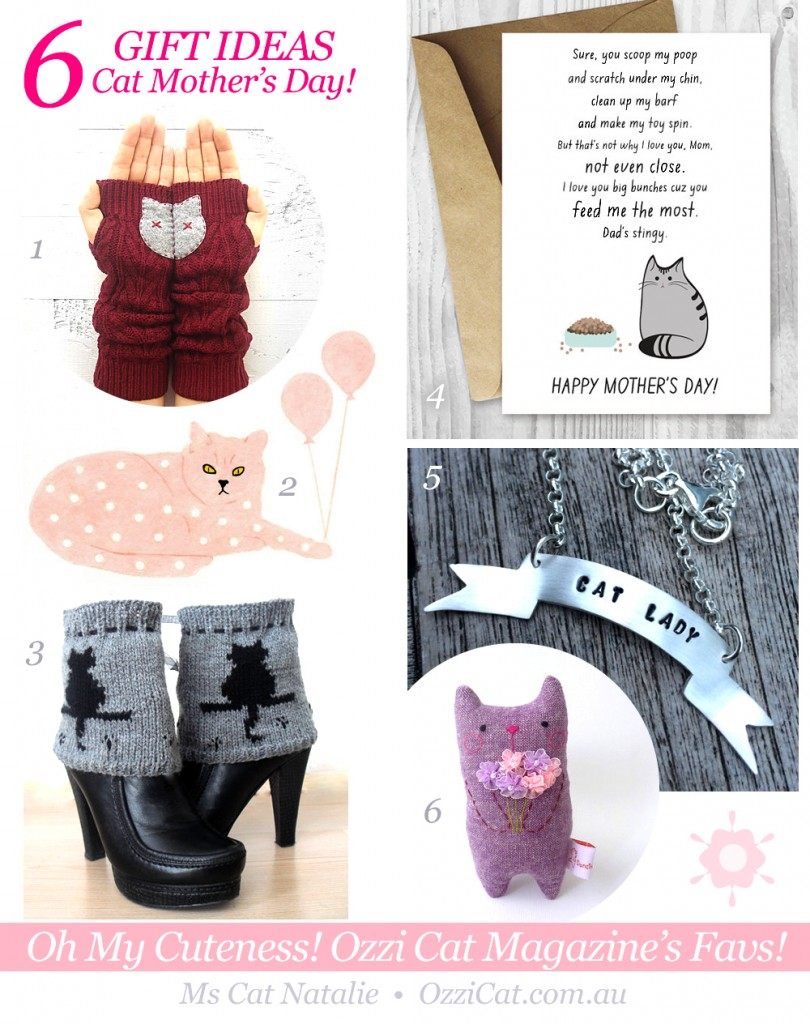 6 Cat Mother's Day Gift Ideas: Best For Cat Mums!
