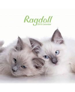 Cat calendar 2015 - RagDolls Calendar