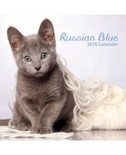 Cat calendar 2015 - Russian Blue Calendar