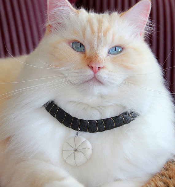 Cat hair fur handbag, necklace, pendant, earring, accessories