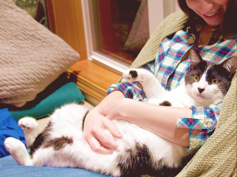 Cat mum with black and white cat fur kid