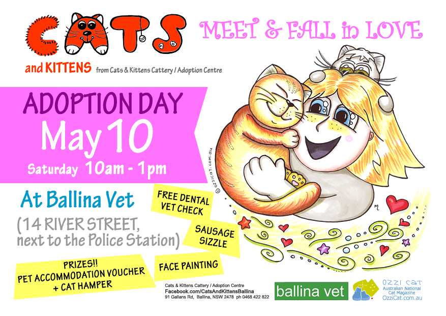 Poster for Adoption Day Event - Adopt / Buy a Cat - Cats And Kittens Ballina
