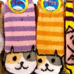 Daiso - cat goods - cute kawaii - cat socks - Australian National Cat Magazine Ozzi Cat