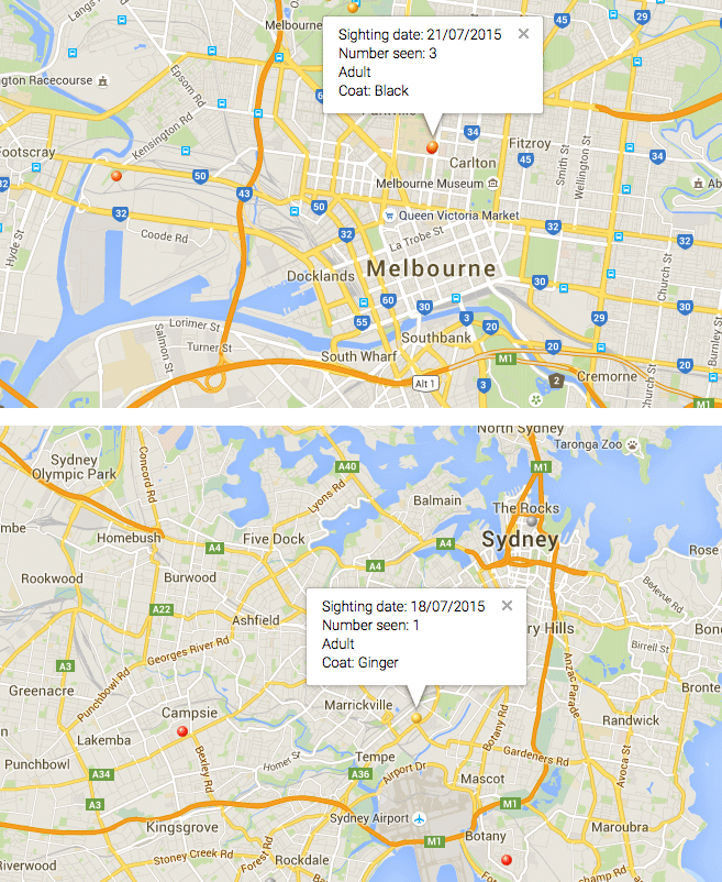 Feral Cat Scan web site - Cat Map - Melbourne - Sydney