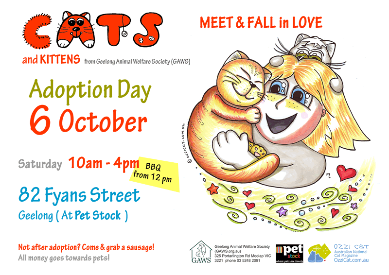 Geelong Animal Welfare Society (GAWS), Adoption Day, 6 October at Pet Stock