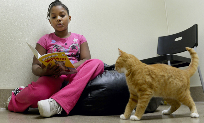 Amirrah Matthews, 10, reads a book to Keller, a blind and deaf ginger cat