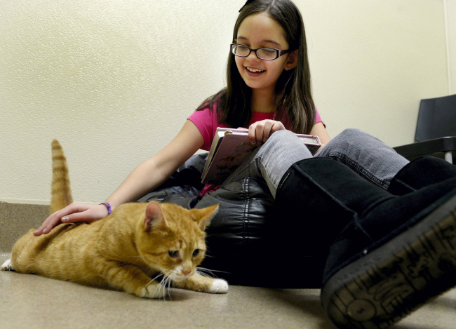 Aliyah Uffner, 9, reads a book to Keller, a blind and deaf ginger cat