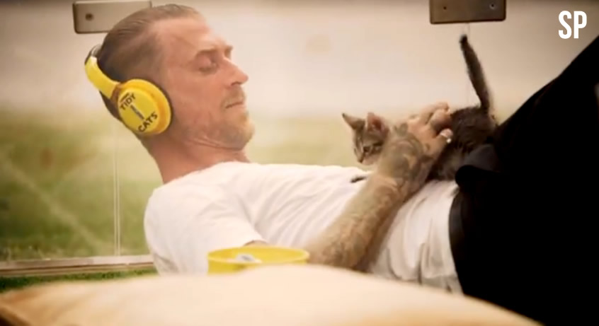 Kitten Therapy - SoulPancake - Tidy Cats - Purina