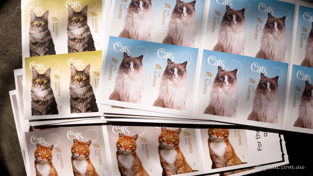 Cats - Stamps - Australia Post Collection