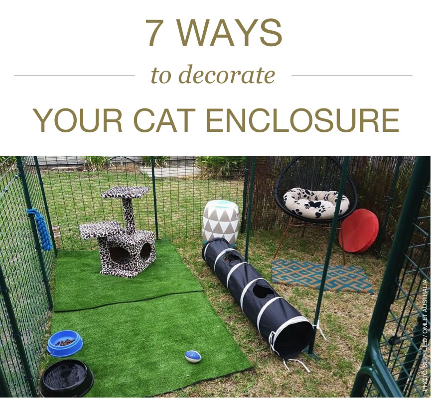 Ozzi Cat Magazine Contributor - Omlet Australia - stylish designer cat enclosures