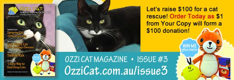 Australian Cat Magazine - Ozzi Cat Magazine - Issue 3 - order