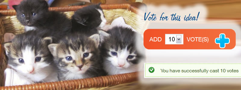 Vote to Support 2nd Chance Cat Rescue