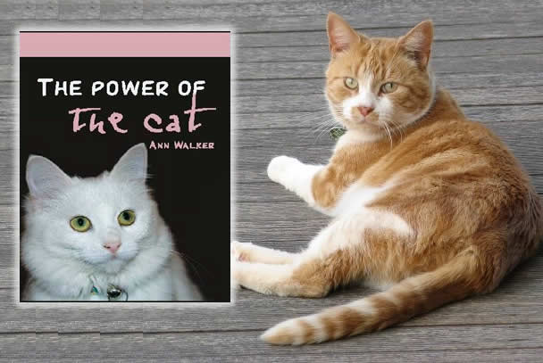 Cat Book: The Power of the Cat by Ann Walker