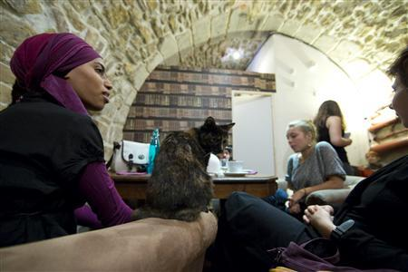 "Cat lovers enjoy a beverage and a cat on a sofa at the ""Cafe des Chats"" - a cat cafe in Paris."