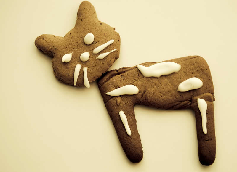 Brown Christmas Cat Cookie