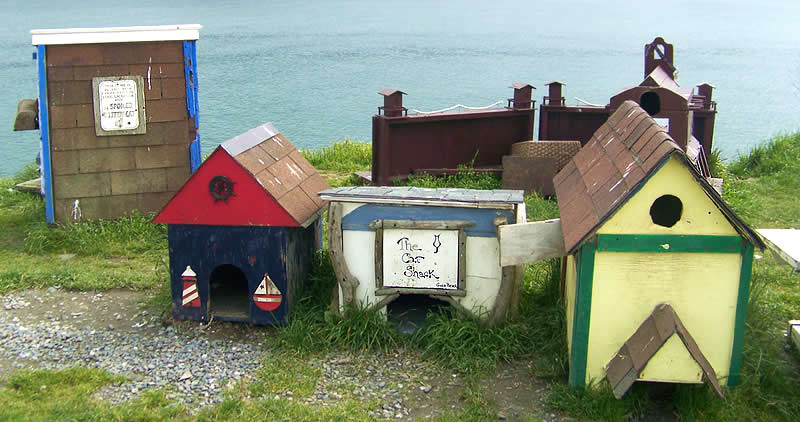 Cat houses on a beach in Oregon