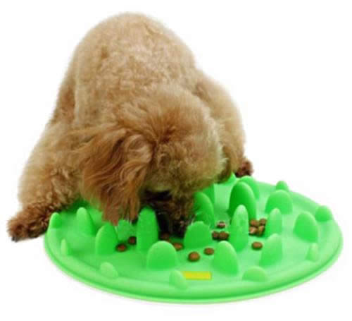 Silicone Slow Eating Feeder - Cat slow puzzle feeder - food dispenser - treat toy